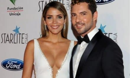 David Bisbal y Rosanna Zanetti cumplieron un año de casados